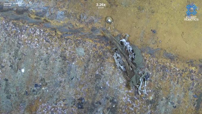 Contaminación y corrosión en un recipiente de CO2.